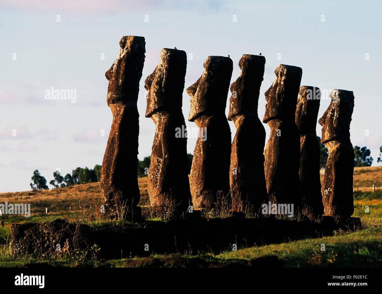 Seven Moai (anthropomorphic monolith sculpture), Ahu Akivi, Rapa-Nui National Park (UNESCO World Heritage List, - Stock Image