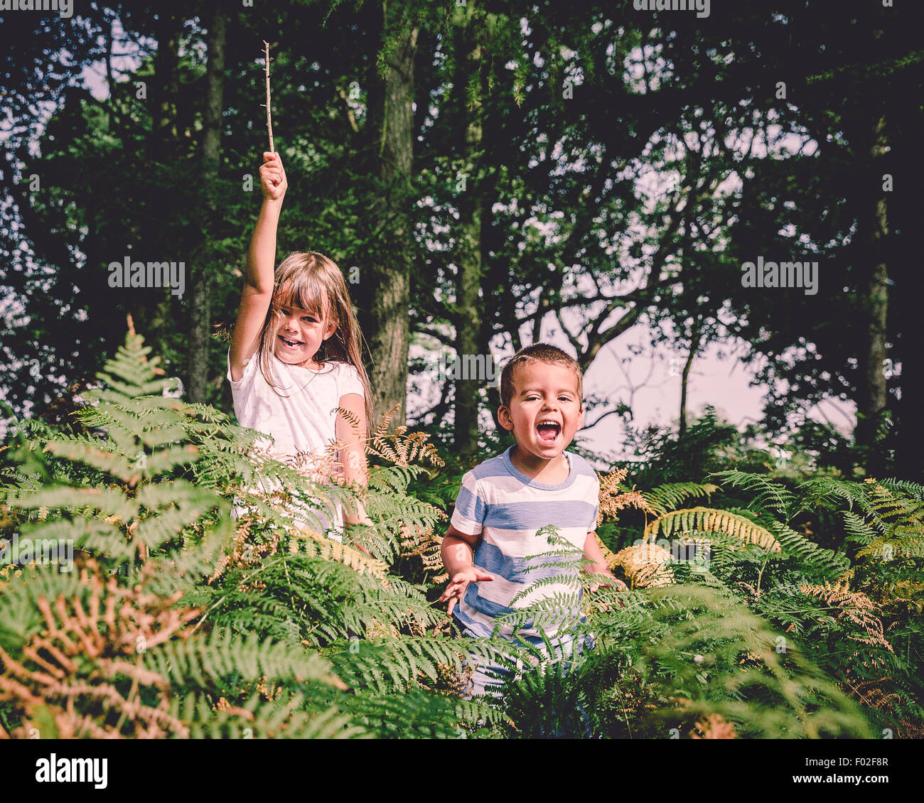 Two happy children jumping out of from behind the ferns in the forest - Stock Image