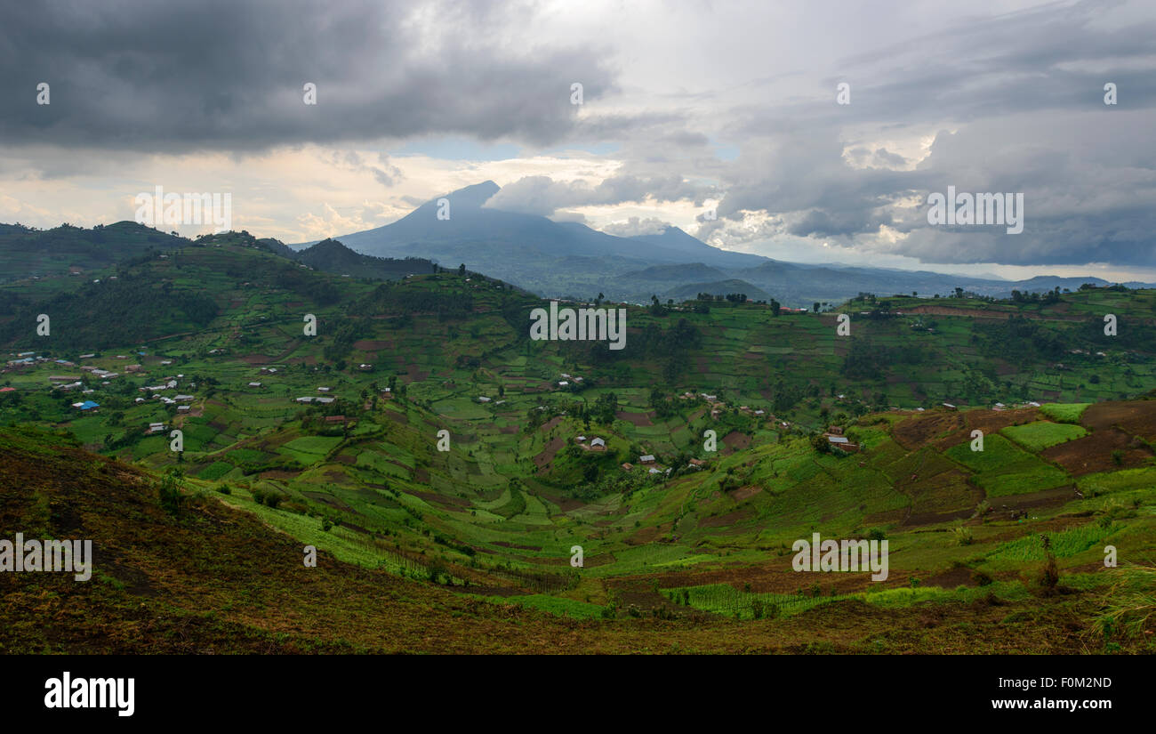 Virunga Mountains, Uganda, Africa - Stock Image