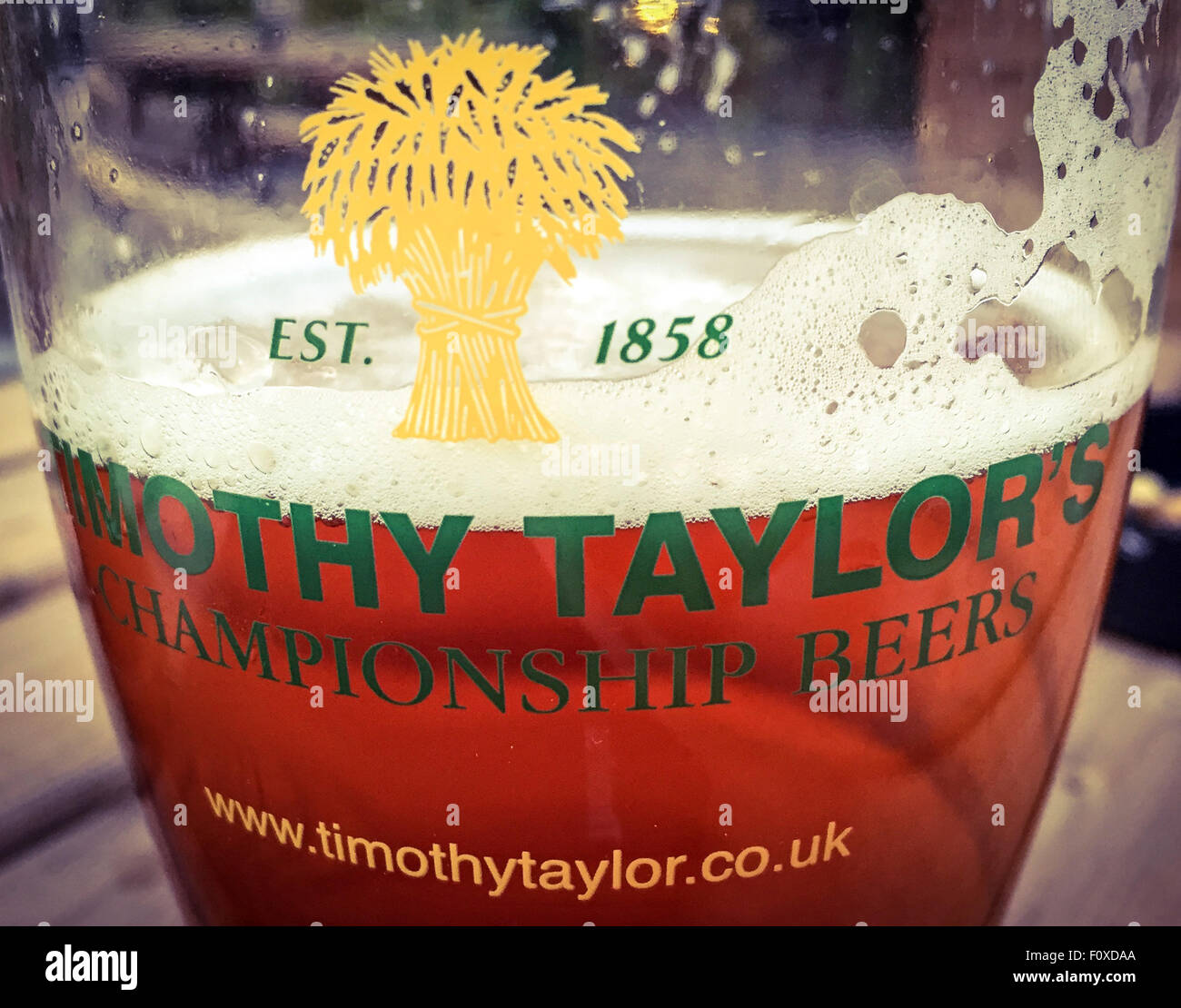 beer,CAMRA,ale,TimothyTaylor,TT TimothyTaylor Championship Beers glass & ale,Yorkshire,England,UK,in,a,glass,pot,pint,english,1858,taken,yard,garden,official,traditional,drink,pub,bar,head,foam,foamy,Yorkshire,England,UK,northern,GoTonySmith,Buy Pictures of,Buy Images Of