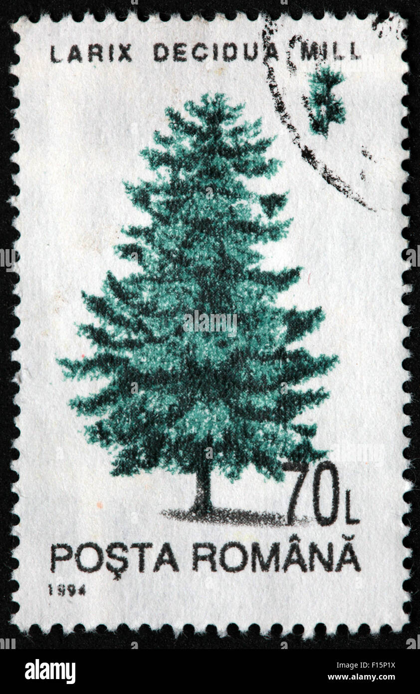 International Post,star,Used and Postmarked,Used,and,postmarked,perforated,stamp,and,postmarked,Stamp,post,posting,mail,hobby,perforation,mark,postage,stamp,print,stamp,cancelled,stamp,payment,correspondence,postman,collection,collector,phila,USSR,Soviet,Bloc,Block,East,Eastern,Europe,Romainia,Romanian,Gotonysmith,post,posting,mail,hobby,perforation,mark,postage,stamp,print,stamp,cancelled,canceled,stamp,payment,correspondence,postman,collection,collector,philately,philatelist,letter,price,history,retro,Australian,Vintage,delivery,date,relationship,communication,Oz,Australia,DownUnder,classic,rare,unique,Austrailian,financial,investment,invest,value,British,empire,nation,canceled,printed,on,black,background,close-up,closeup,close,up,sent,send,philately,mailing,shipping,postoffice,office,isolated,circa,special,colour,color,postmarked,marked,airmail,aged,antique,retro,cutting,historic,old,stamps,collection,stamp collection,album,Timbre,Sello,Stempel,Selo,Buy Pictures of,Buy Images Of,Down Under,Black background
