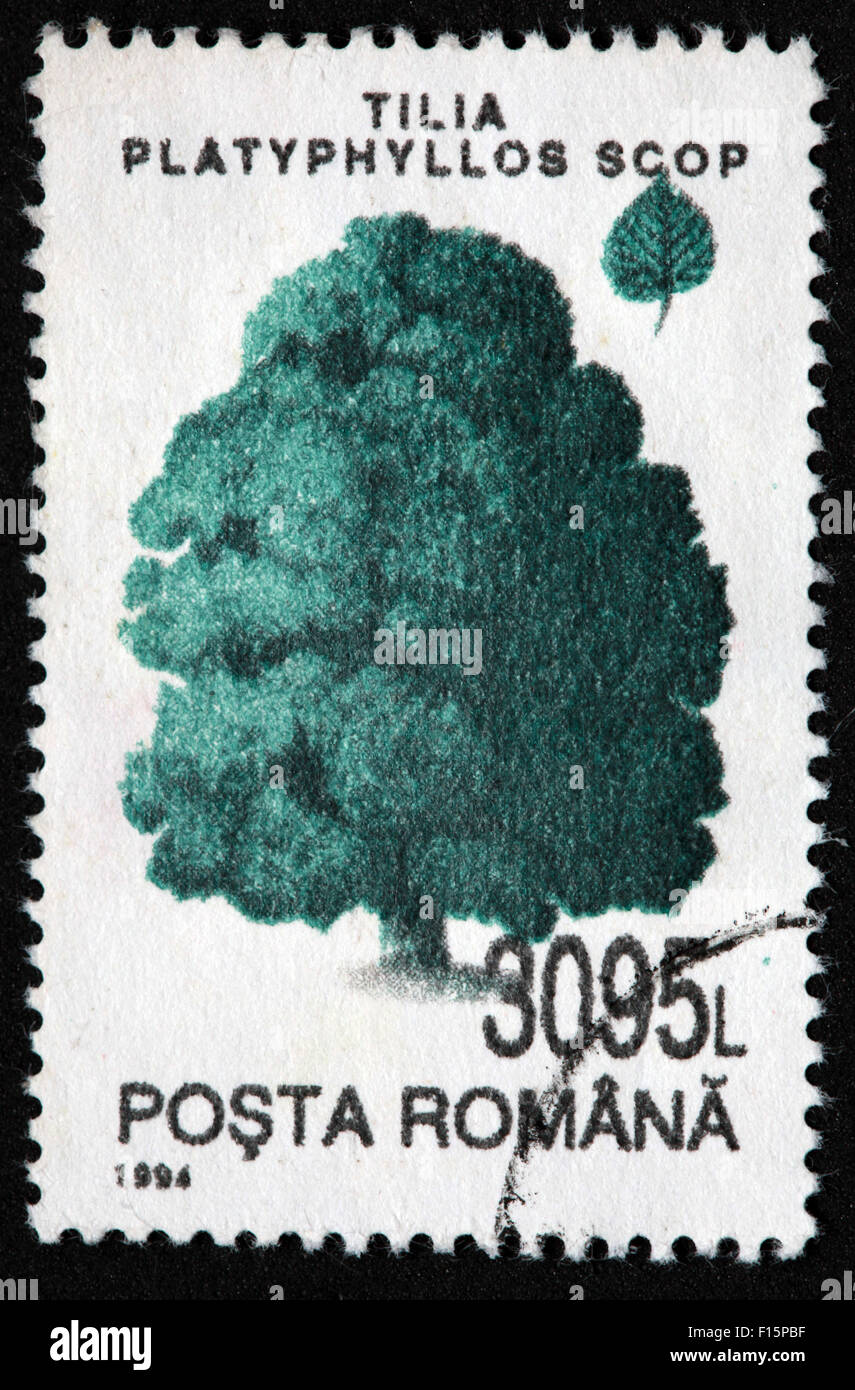 International Post,star,Used and Postmarked,Used,and,postmarked,perforated,stamp,Used,and,postmarked,Stamp,post,posting,mail,hobby,perforation,mark,postage,stamp,print,stamp,cancelled,stamp,payment,correspondence,postman,collection,collector,phila,USSR,Soviet,Bloc,Block,East,Eastern,Europe,Scop pine,Romania,Romanians,Gotonysmith,post,posting,mail,hobby,perforation,mark,postage,stamp,print,stamp,cancelled,canceled,stamp,payment,correspondence,postman,collection,collector,philately,philatelist,letter,price,history,retro,Australian,Vintage,delivery,date,relationship,communication,Oz,Australia,DownUnder,classic,rare,unique,Austrailian,financial,investment,invest,value,British,empire,nation,canceled,printed,on,black,background,close-up,closeup,close,up,sent,send,philately,mailing,shipping,postoffice,office,isolated,circa,special,colour,color,postmarked,marked,airmail,aged,antique,retro,cutting,historic,old,stamps,collection,stamp collection,album,Timbre,Sello,Stempel,Selo,Buy Pictures of,Buy Images Of,Down Under,Black background