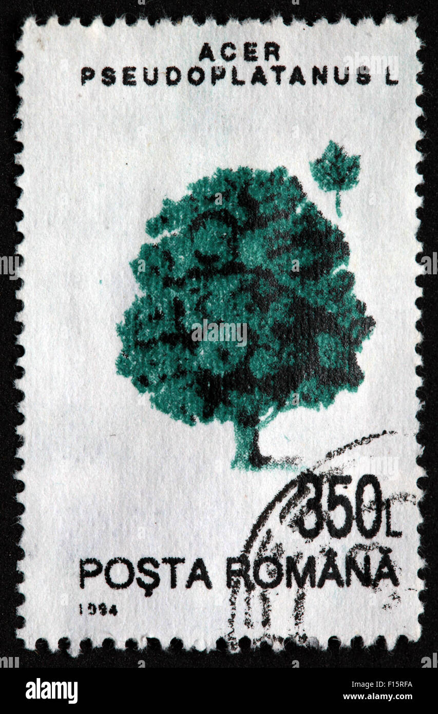 International Post,star,Used and Postmarked,Used,and,postmarked,perforated,stamp,Used,and,postmarked,Stamp,post,posting,mail,hobby,perforation,mark,postage,stamp,print,stamp,cancelled,stamp,payment,correspondence,postman,collection,collector,phila,USSR,Soviet,Bloc,Block,East,Eastern,Europe,Romania,Romanian,Gotonysmith,post,posting,mail,hobby,perforation,mark,postage,stamp,print,stamp,cancelled,canceled,stamp,payment,correspondence,postman,collection,collector,philately,philatelist,letter,price,history,retro,Australian,Vintage,delivery,date,relationship,communication,Oz,Australia,DownUnder,classic rare unique Austrailian financial,investment,invest,value,British,empire,nation,canceled,printed on black background,close-up,closeup,close,up,sent,send,philately,mailing,shipping,postoffice,office,isolated,circa,special,colour,color,postmarked,marked,airmail,aged,antique,retro,cutting,historic,old,stamps,collection,stamp collection,album,Timbre,Sello,Stempel,Selo,Buy Pictures of,Buy Images Of,Down Under,Black background
