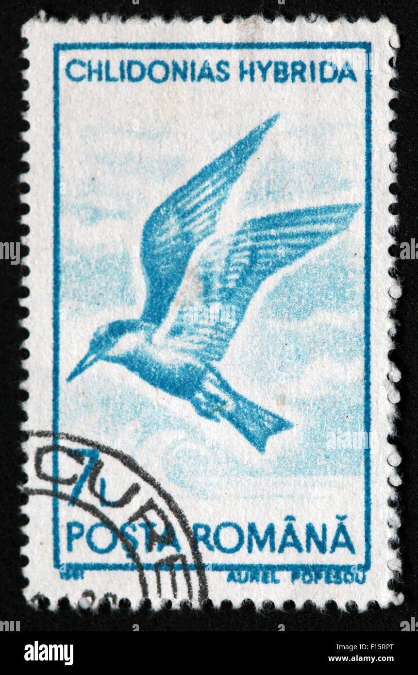 Romania,International Post,star,Used and Postmarked,Used,and,postmarked,perforated,stamp,Used,and,postmarked,Stamp,post,posting,mail,hobby,perforation,mark,postage,stamp,print,stamp,cancelled,stamp,payment,correspondence,postman,collection,collector,phila,USSR,Soviet,Bloc,Block,East,Eastern,Europe,Romainian,Gotonysmith,post,posting,mail,hobby,perforation,mark,postage,stamp,print,stamp,cancelled,canceled,stamp,payment,correspondence,postman,collection,collector,philately,philatelist,letter,price,history,retro,Australian,Vintage,delivery,date,relationship,communication,Oz,Australia,DownUnder,classic rare unique Austrailian financial,investment,invest,value,British,empire,nation,canceled,printed on black background,close-up,closeup,close,up,sent,send,philately,mailing,shipping,postoffice,office,isolated,circa,special,colour,color,postmarked,marked,airmail,aged,antique,retro,cutting,historic,old,stamps,collection,stamp collection,album,Timbre,Sello,Stempel,Selo,Buy Pictures of,Buy Images Of,Down Under,Black background