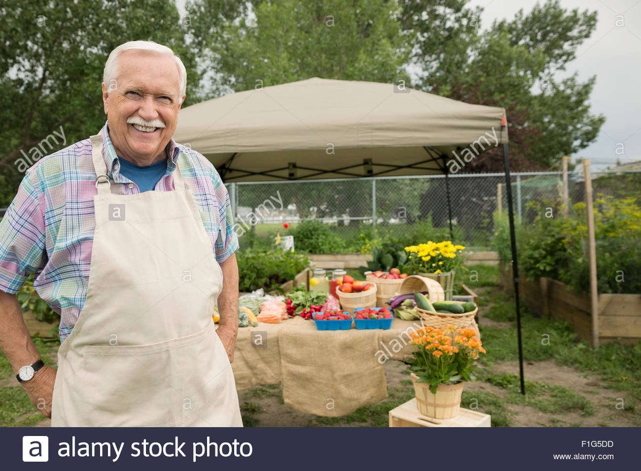 Portrait confident farmer at farmers market stall - Stock Image