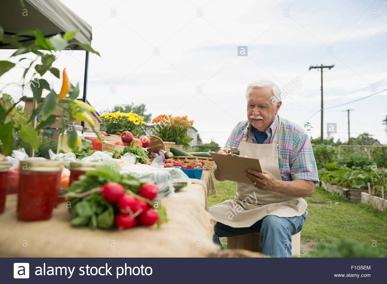 Farmer with clipboard checking inventory farmers market stall - Stock Image