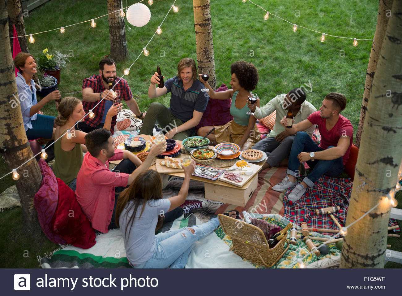 Friends toasting drinks at backyard dinner party - Stock Image