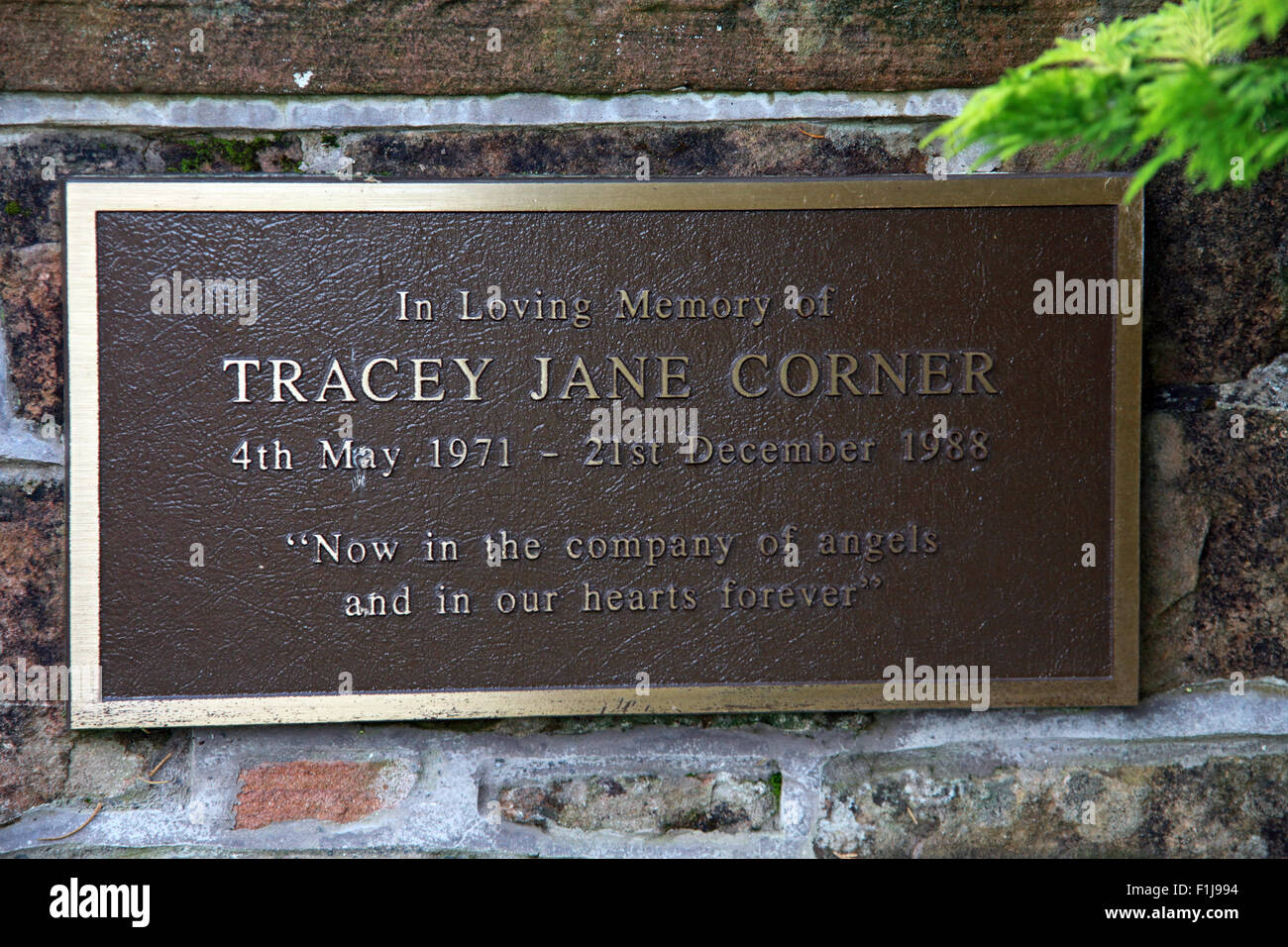 Jane Corner,Scotland,Lodge,Visitors,Centre,DLVC,Trust,Lockerbie,Memorial,Remembrance,Scotland,Victims,Pan,Am,PanAm,flight,103,bomb,bombing,terrorist,December,1988,attack,crash,dead,site,21/12/1988,270,victims,Scottish,Town,conspiracy,blast,Tundergarth,Room,garden,of,Dryfesdale,Cemetery,New York,GoTonySmith,Lodge,Visitors,Centre,DLVC,Trust,Lockerbie,Memorial,Scotland,Victims,Pan,Am,PanAm,flight,103,bomb,bombing,terrorist,December,1988,attack,crash,dead,site,21/12/1988,270,victims,Scottish,Town,conspiracy,blast,Tundergarth,Room,garden,of,Dryfesdale,Cemetery,news,Cultural,understanding,remembering,innocent,transatlantic,Frankfurt,Detroit,Libyan,Libya,Colonel Muammar Gaddafi,civil,case,compensation,terrorism,PA103,30,30years,years,Syracuse,University,SU,family,collections,Story,Archive,Archives,40,35,Timeline,saga,disaster,air,Scholars,program,programs,remembrance,Clipper Maid of the Seas,N739PA,Boeing,727,plane,aircraft,Scotland,UK,United Kingdom,GB,Great Britain,resting,place,Buy Pictures of,Buy Images Of,New York,al megrahi,30 Years