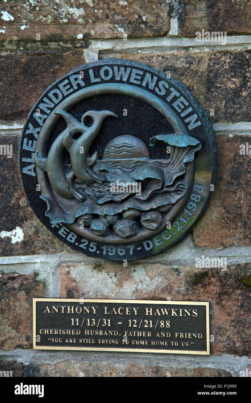 Alexander Lowenstein Anthony Lacey Hawkins,Scotland,Lodge,Visitors,Centre,DLVC,Trust,Lockerbie,Memorial,Remembrance,Scotland,Victims,Pan,Am,PanAm,flight,103,bomb,bombing,terrorist,December,1988,attack,crash,dead,site,21/12/1988,270,victims,Scottish,Town,conspiracy,blast,Tundergarth,Room,New York,GoTonySmith,Lodge,Visitors,Centre,DLVC,Trust,Lockerbie,Memorial,Scotland,Victims,Pan,Am,PanAm,flight,103,bomb,bombing,terrorist,December,1988,attack,crash,dead,site,21/12/1988,270,victims,Scottish,Town,conspiracy,blast,Tundergarth,Room,garden,of,Dryfesdale,Cemetery,news,Cultural,understanding,remembering,innocent,transatlantic,Frankfurt,Detroit,Libyan,Libya,Colonel Muammar Gaddafi,civil,case,compensation,terrorism,PA103,30,30years,years,Syracuse,University,SU,family,collections,Story,Archive,Archives,40,35,Timeline,saga,disaster,air,Scholars,program,programs,remembrance,Clipper Maid of the Seas,N739PA,Boeing,727,plane,aircraft,Scotland,UK,United Kingdom,GB,Great Britain,resting,place,Buy Pictures of,Buy Images Of,New York,al megrahi,30 Years