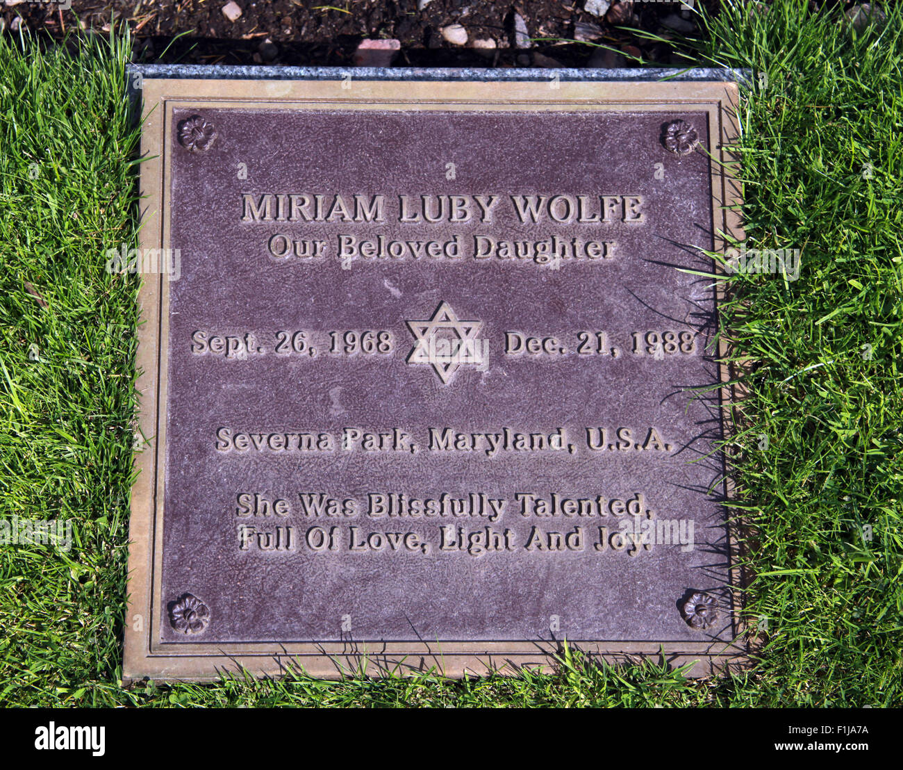 Luby Wolfe Severna Park Maryland Jewish religion,Scotland,Lodge,Visitors,Centre,DLVC,Trust,Lockerbie,Memorial,Remembrance,Scotland,Victims,Pan,Am,PanAm,flight,103,bomb,bombing,terrorist,December,1988,attack,crash,dead,site,21/12/1988,270,victims,Scottish,Town,conspiracy,blast,Tundergarth,New York,GoTonySmith,Lodge,Visitors,Centre,DLVC,Trust,Lockerbie,Memorial,Scotland,Victims,Pan,Am,PanAm,flight,103,bomb,bombing,terrorist,December,1988,attack,crash,dead,site,21/12/1988,270,victims,Scottish,Town,conspiracy,blast,Tundergarth,Room,garden,of,Dryfesdale,Cemetery,news,Cultural,understanding,remembering,innocent,transatlantic,Frankfurt,Detroit,Libyan,Libya,Colonel Muammar Gaddafi,civil,case,compensation,terrorism,PA103,30,30years,years,Syracuse,University,SU,family,collections,Story,Archive,Archives,40,35,Timeline,saga,disaster,air,Scholars,program,programs,remembrance,Clipper Maid of the Seas,N739PA,Boeing,727,plane,aircraft,Scotland,UK,United Kingdom,GB,Great Britain,resting,place,Buy Pictures of,Buy Images Of,New York,al megrahi,30 Years