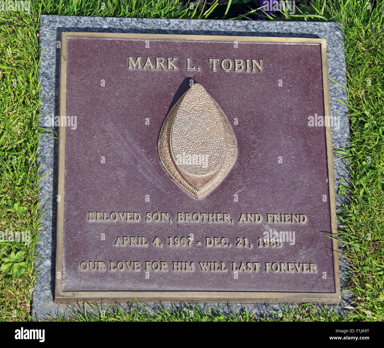 Tobin,Lodge,Visitors,Centre,DLVC,Trust,Lockerbie,Memorial,Remembrance,Scotland,Victims,Pan,Am,PanAm,flight,103,bomb,bombing,terrorist,December,1988,attack,crash,dead,site,21/12/1988,270,victims,Scottish,Town,conspiracy,blast,Tundergarth,Room,garden,of,Dryfesdale,Cemetery,news,Cultural,un,New York,GoTonySmith,Lodge,Visitors,Centre,DLVC,Trust,Lockerbie,Memorial,Scotland,Victims,Pan,Am,PanAm,flight,103,bomb,bombing,terrorist,December,1988,attack,crash,dead,site,21/12/1988,270,victims,Scottish,Town,conspiracy,blast,Tundergarth,Room,garden,of,Dryfesdale,Cemetery,news,Cultural,understanding,remembering,innocent,transatlantic,Frankfurt,Detroit,Libyan,Libya,Colonel Muammar Gaddafi,civil,case,compensation,terrorism,PA103,30,30years,years,Syracuse,University,SU,family,collections,Story,Archive,Archives,40,35,Timeline,saga,disaster,air,Scholars,program,programs,remembrance,Clipper Maid of the Seas,N739PA,Boeing,727,plane,aircraft,Scotland,UK,United Kingdom,GB,Great Britain,resting,place,Buy Pictures of,Buy Images Of,New York,al megrahi,30 Years