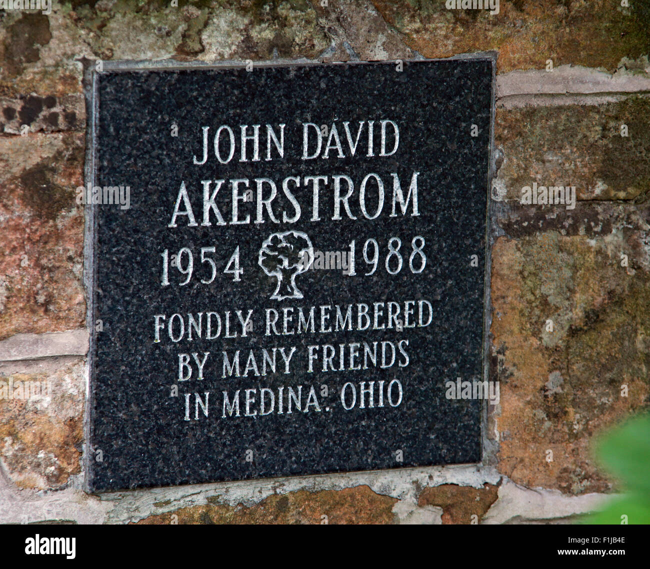 David Akerstrom,Scotland,Lodge,Visitors,Centre,DLVC,Trust,Lockerbie,Memorial,Scotland,Victims,Pan,Am,PanAm,flight,103,bomb,bombing,terrorist,December,1988,attack,crash,dead,site,21/12/1988,270,victims,Scottish,Town,conspiracy,blast,Tundergarth,Room,garden,of,Dryfesdale,Cemetery,news,New York,GoTonySmith,Lodge,Visitors,Centre,DLVC,Trust,Lockerbie,Memorial,Scotland,Victims,Pan,Am,PanAm,flight,103,bomb,bombing,terrorist,December,1988,attack,crash,dead,site,21/12/1988,270,victims,Scottish,Town,conspiracy,blast,Tundergarth,Room,garden,of,Dryfesdale,Cemetery,news,Cultural,understanding,remembering,innocent,transatlantic,Frankfurt,Detroit,Libyan,Libya,Colonel Muammar Gaddafi,civil,case,compensation,terrorism,PA103,30,30years,years,Syracuse,University,SU,family,collections,Story,Archive,Archives,40,35,Timeline,saga,disaster,air,Scholars,program,programs,remembrance,Clipper Maid of the Seas,N739PA,Boeing,727,plane,aircraft,Scotland,UK,United Kingdom,GB,Great Britain,resting,place,Buy Pictures of,Buy Images Of,New York,al megrahi,30 Years
