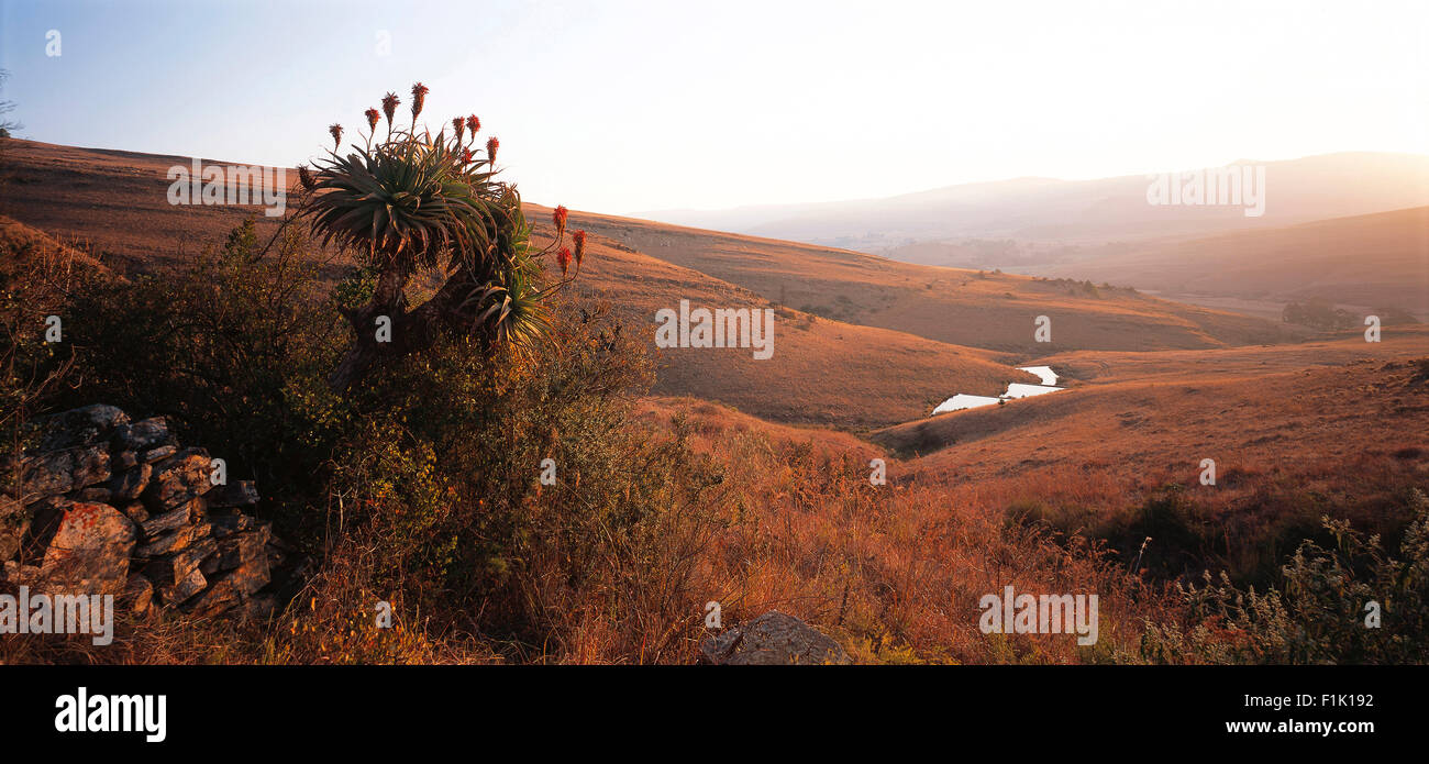 Scenic from Dullstroom Mpumalanga, South Africa - Stock Image