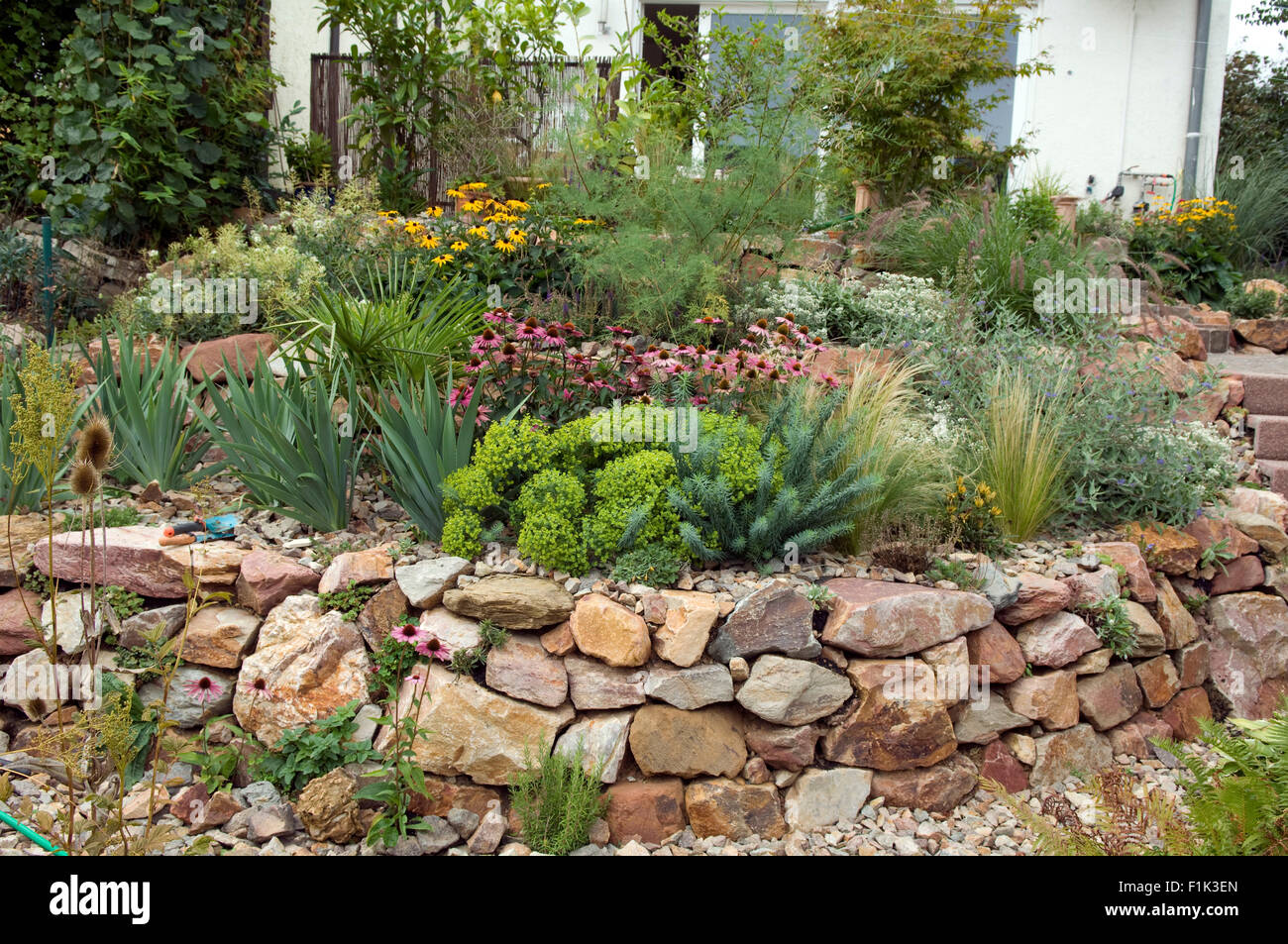 steingarten; trockenmauer; fuenf, monate nach bepflanzung stock