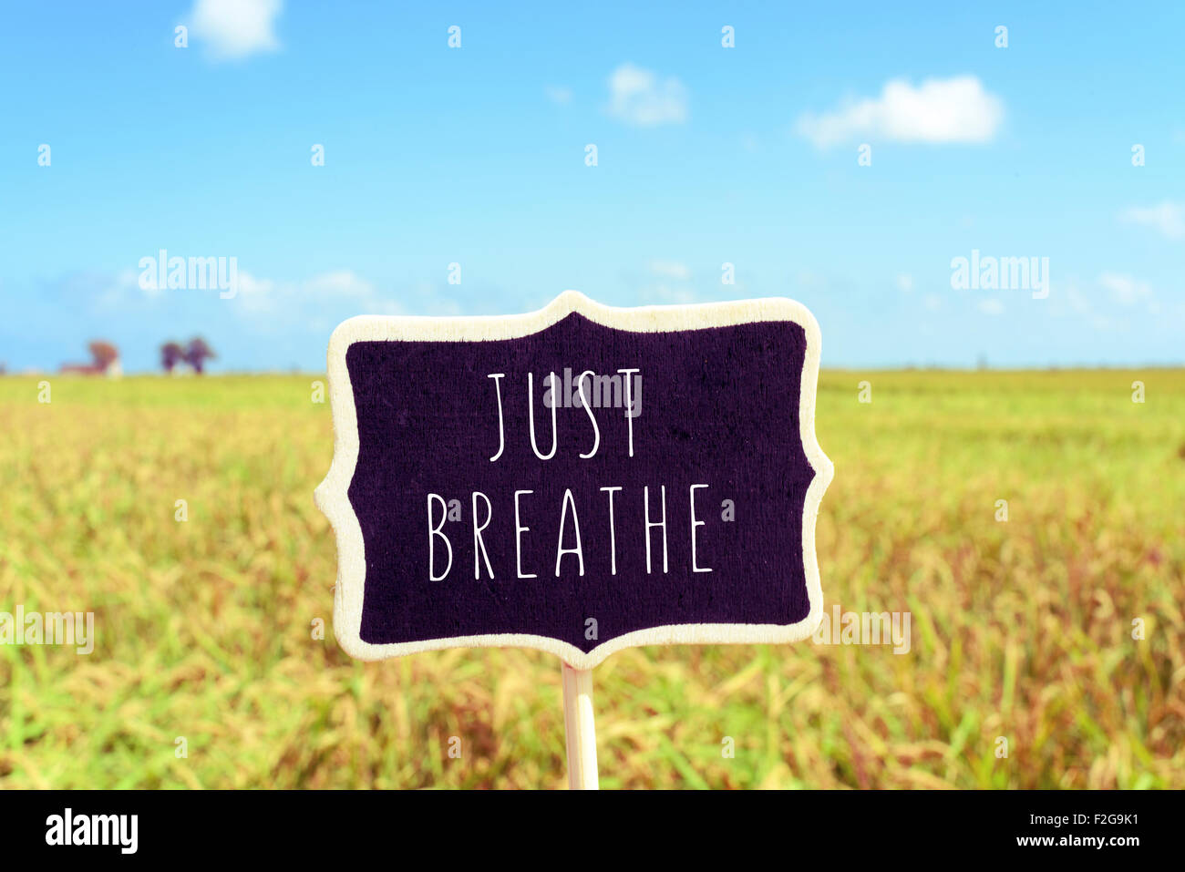 a black signboard with the text just breathe written in it in a peaceful landscape - Stock Image