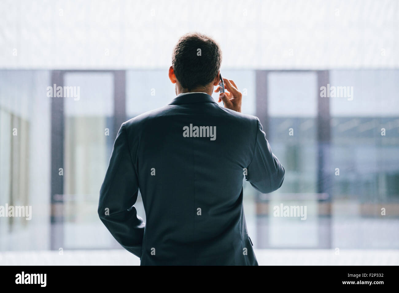 Back view of businessman talking on phone - Stock Image