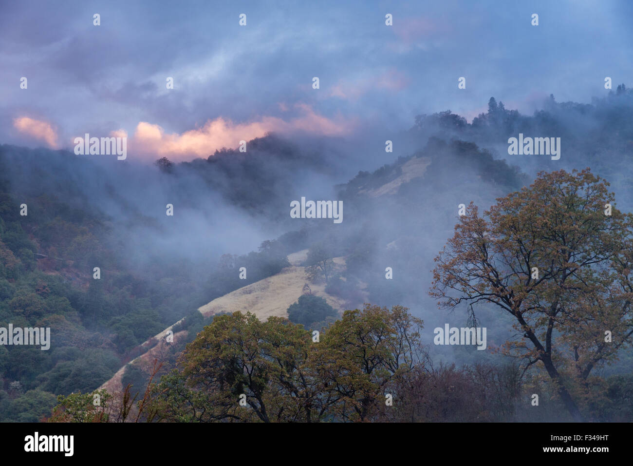 mist after a rain shower in the Kaweah Valley, Sequoia National Park, California, USA - Stock Image