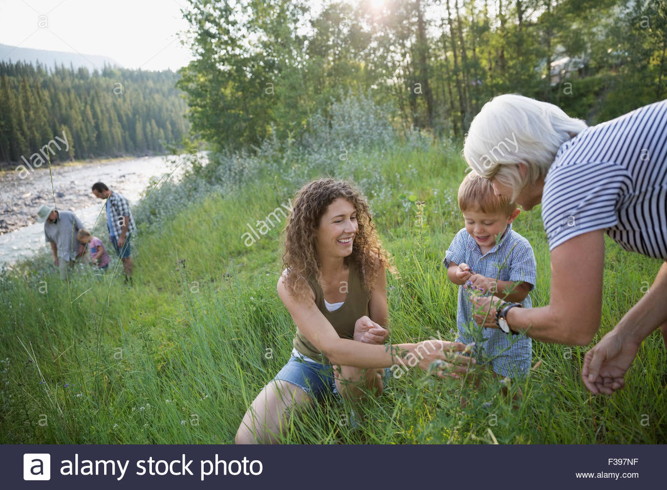 Multi-generation family playing in tall grass - Stock Image