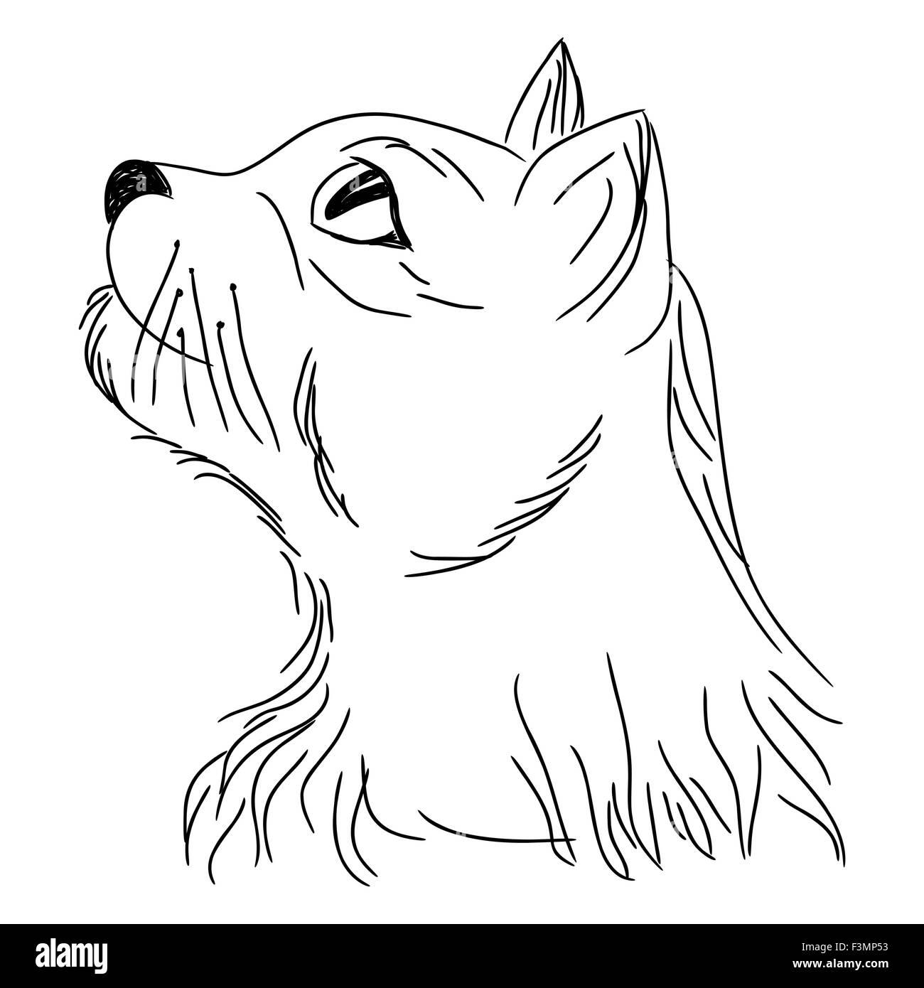 cat in profile looking up portrait sketching cartoon vector stock