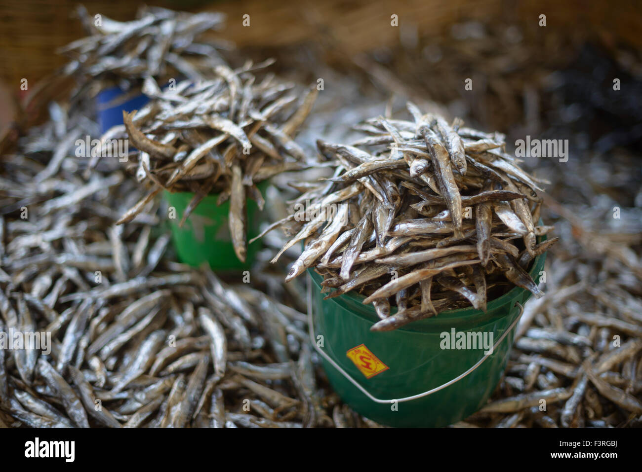 Open-air fish market at the Lake Malawi, Malawi, Africa - Stock Image