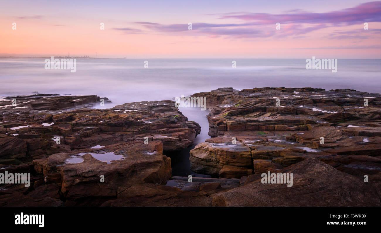 Coastal rocks at Seaton Sluice - Stock Image