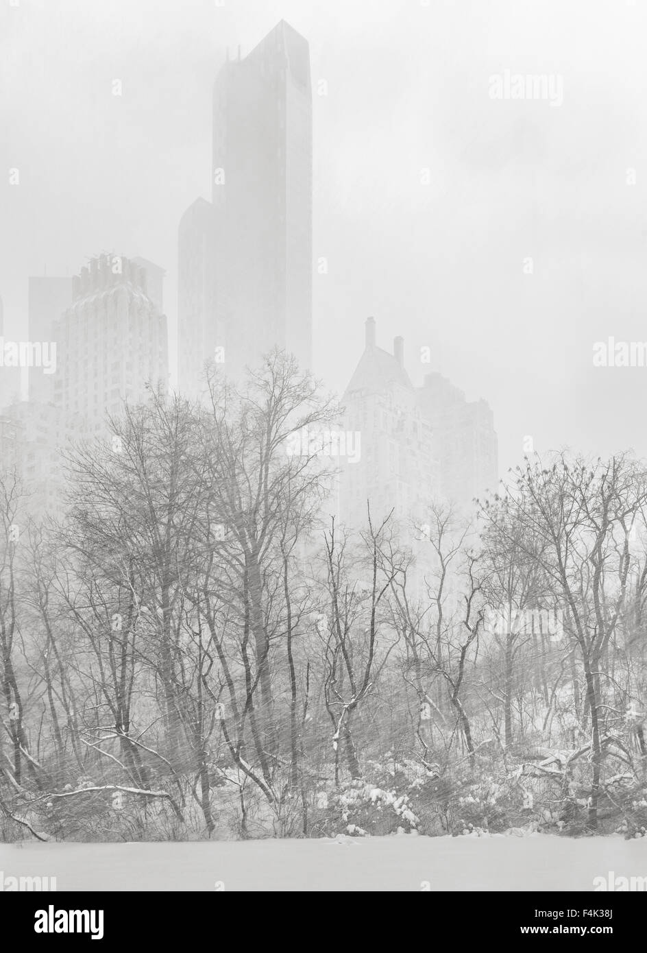 Central Park at The Pond, New York City. Manhattan skyscrapers appear out of a winter snowstorm. - Stock Image