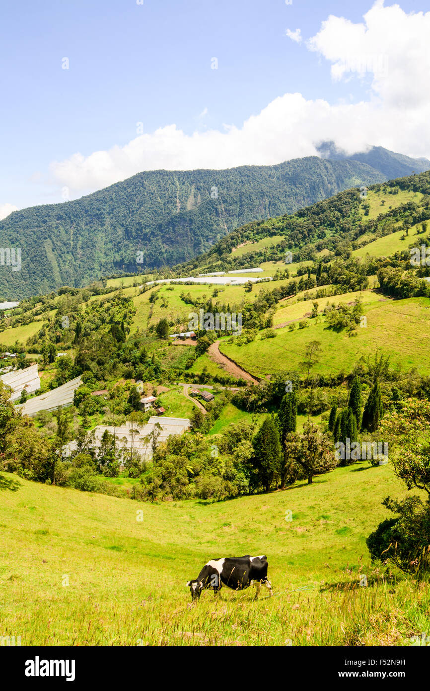 Landscape In Andes Mountains - Stock Image