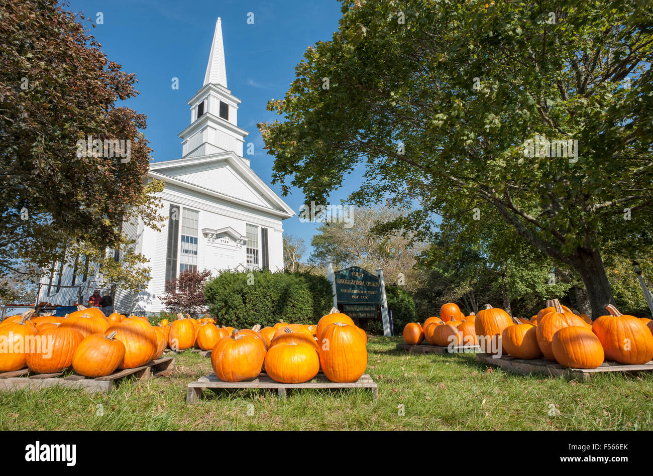 Pumpkin Patch pumpkins for sale at the First Congregational Church United Church of Christ Cape Cod Chatham Massachusetts Stock Photo