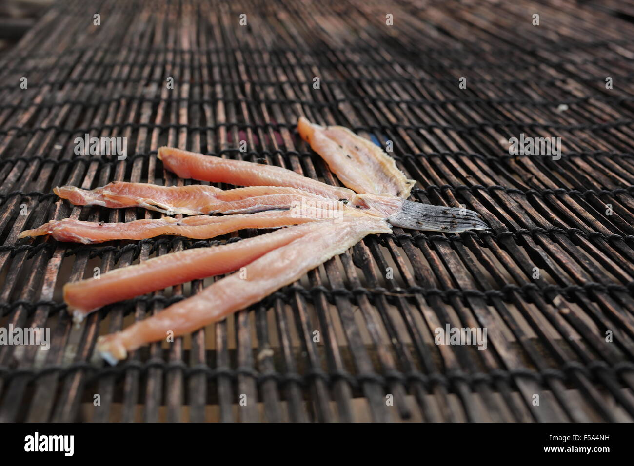 Fish drying Stock Photo