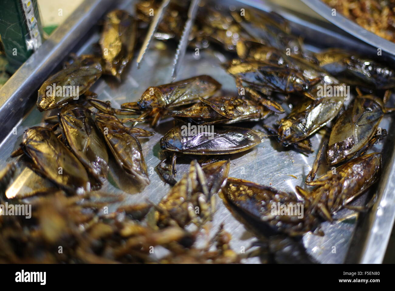 Fried cockroaches Stock Photo