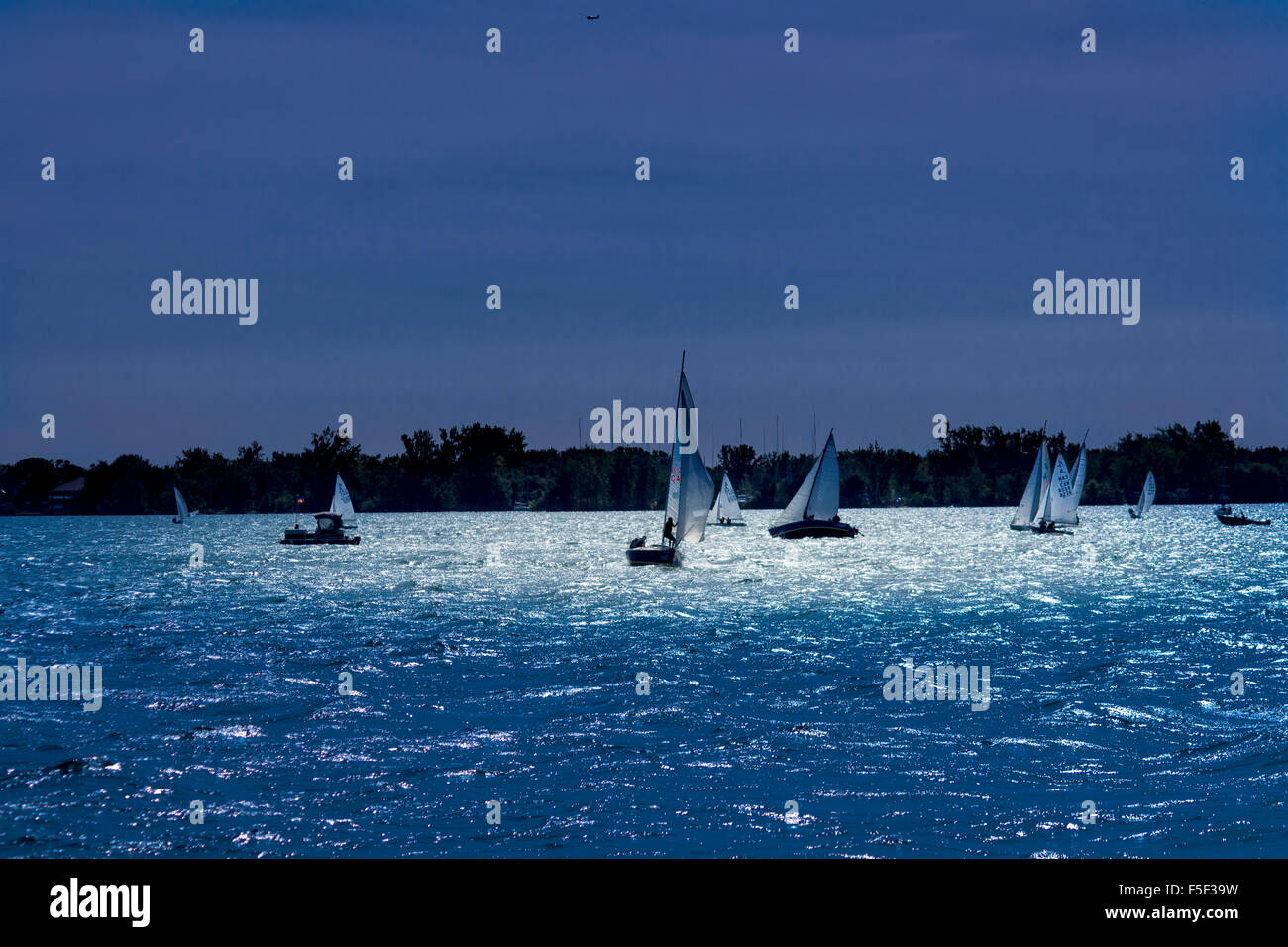 sailboats-in-moonlight-on-lake-ontario-F5F39W.jpg