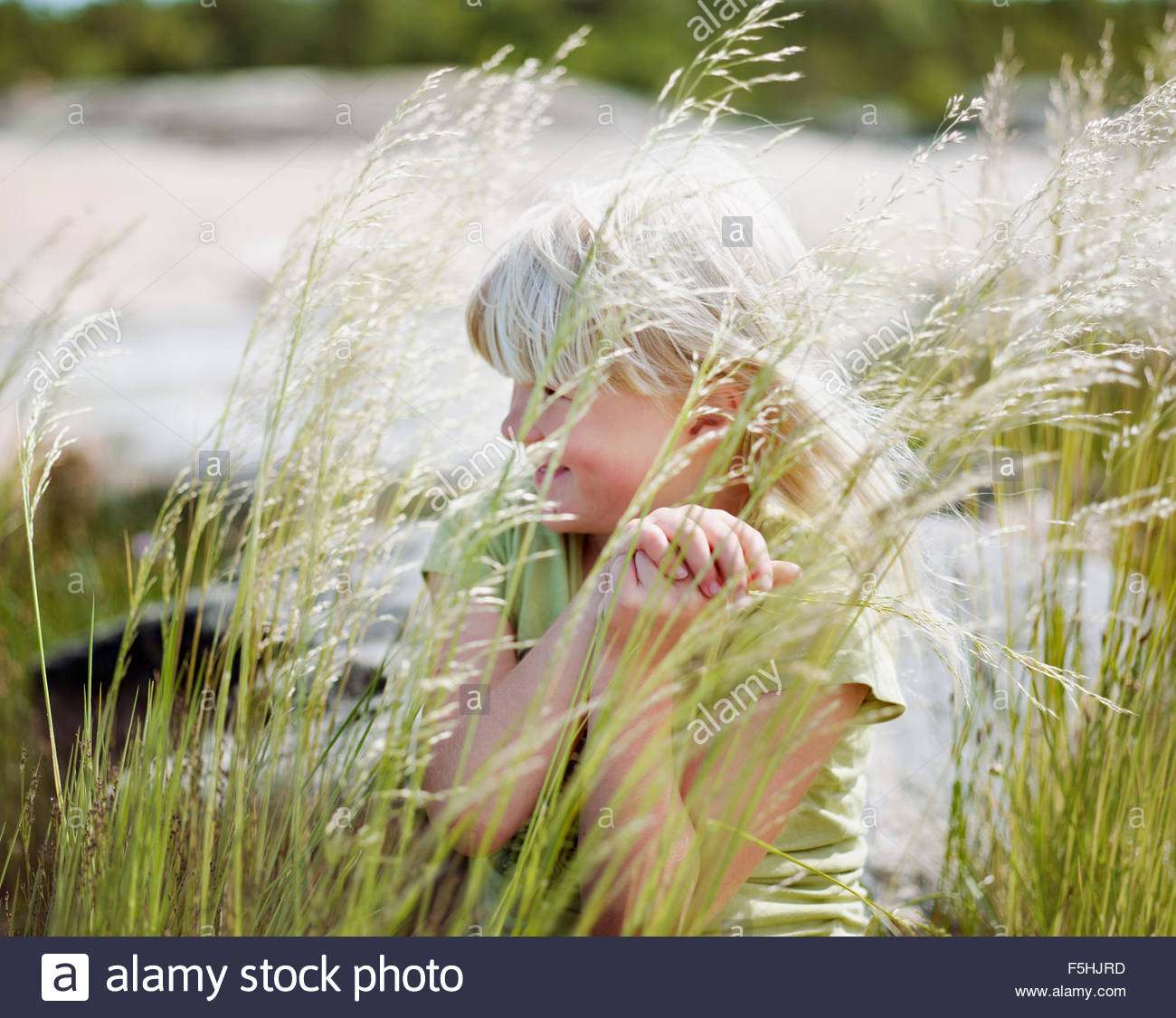 Sweden, Stockholm Archipelago, Uppland, Arholma, Girl (6-7) behind tall grass - Stock Image