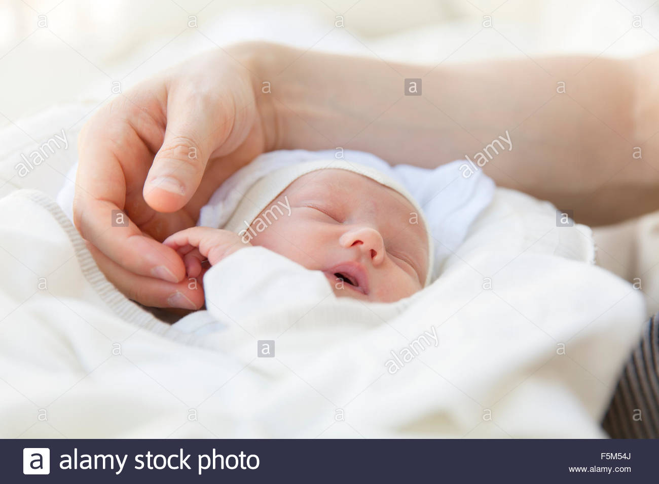 Sweden, Close-up of father holding baby boy's hand - Stock Image