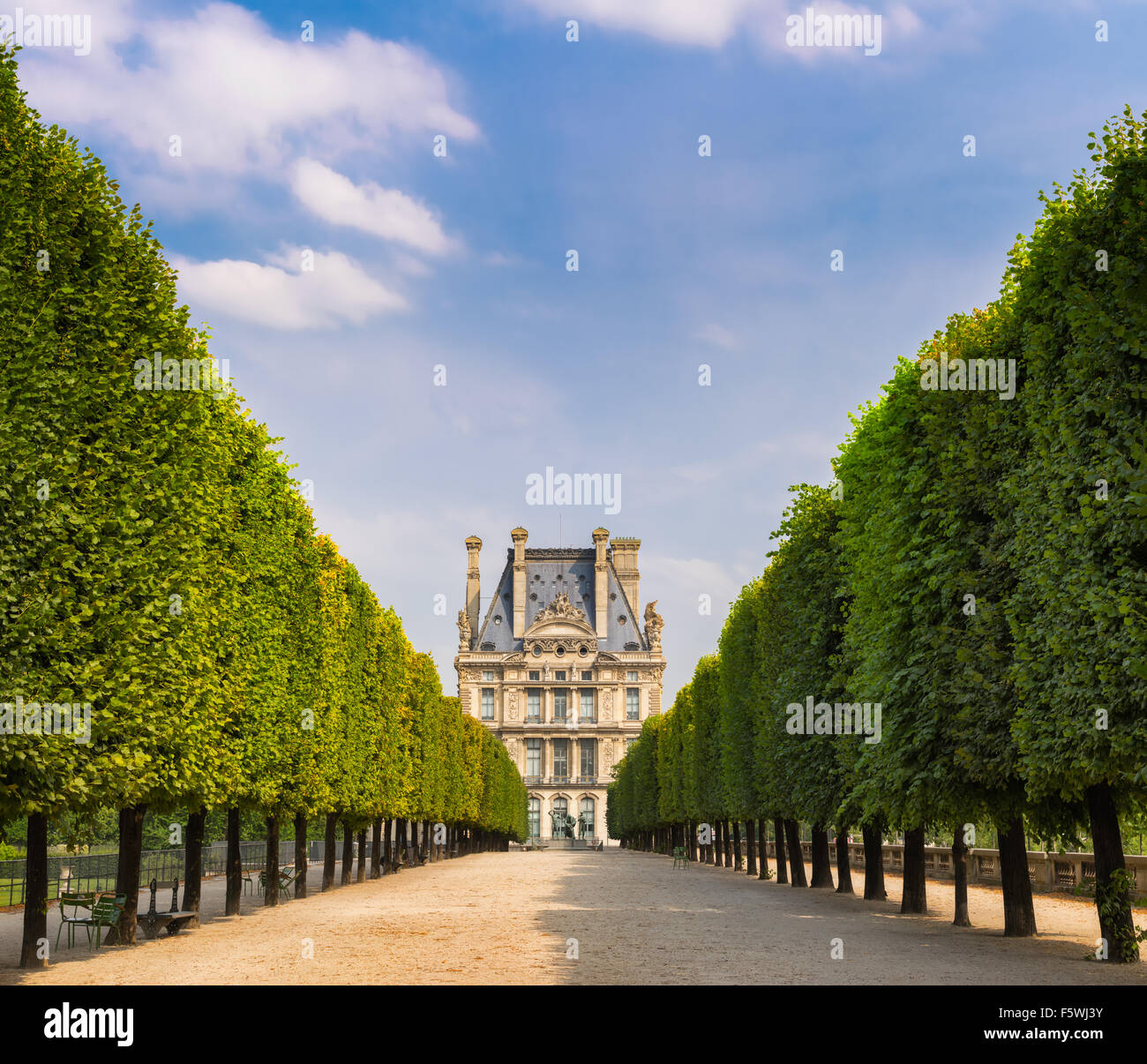 Tuilleries Garden tree-lined vista leading to Louvre Museum. Summer view of the Terrasse du Bord de l'Eau in - Stock Image