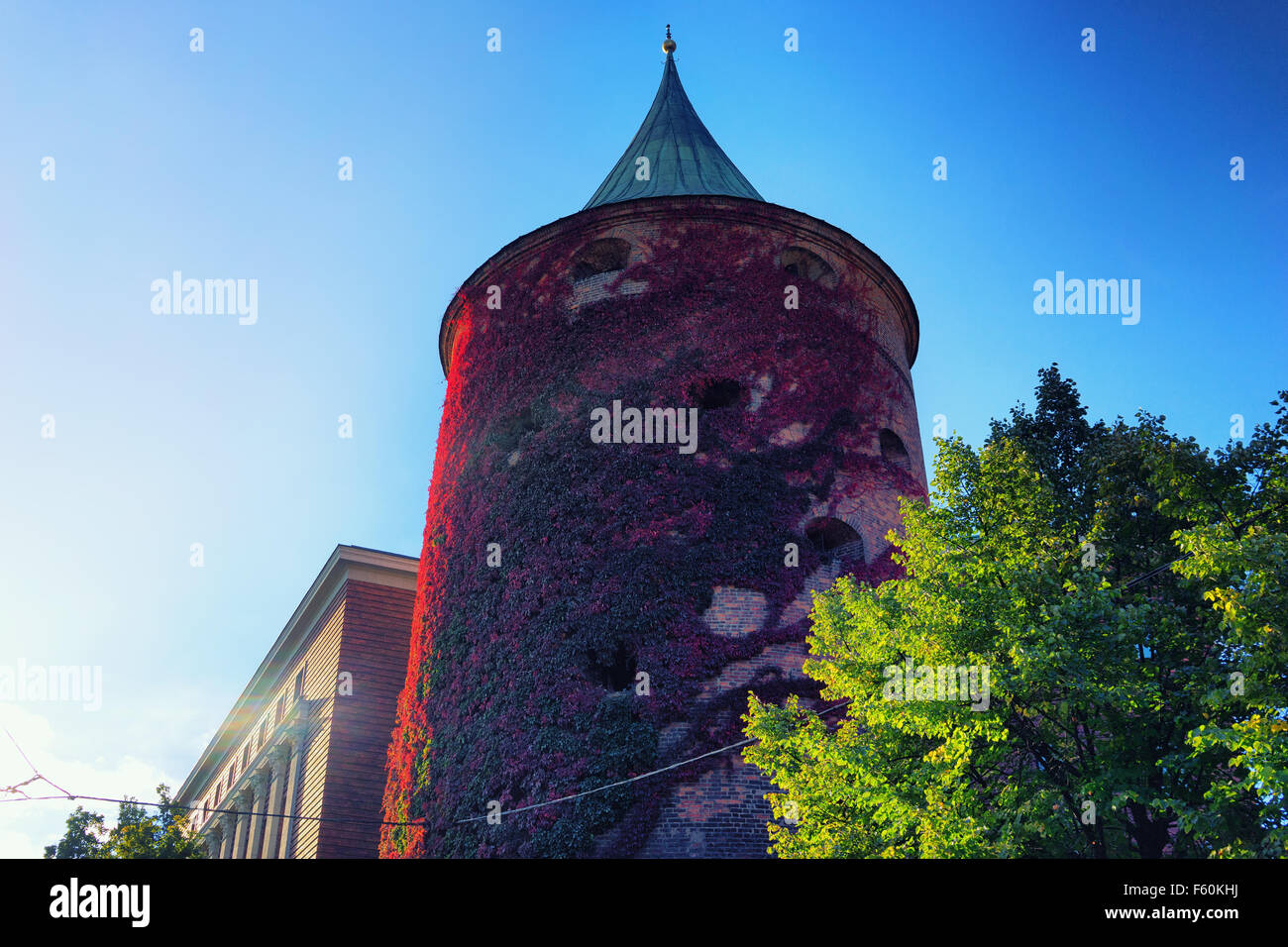 Powder Tower in the old town of Riga wrapped red curly custom against the blue sky and green tree - Stock Image