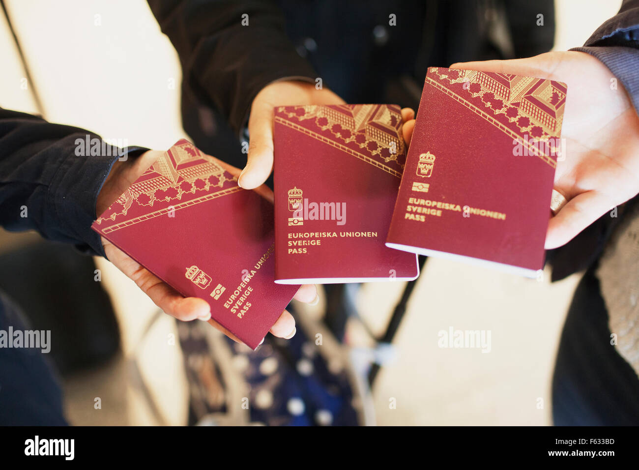 Women holding passport of the European Union - Stock Image