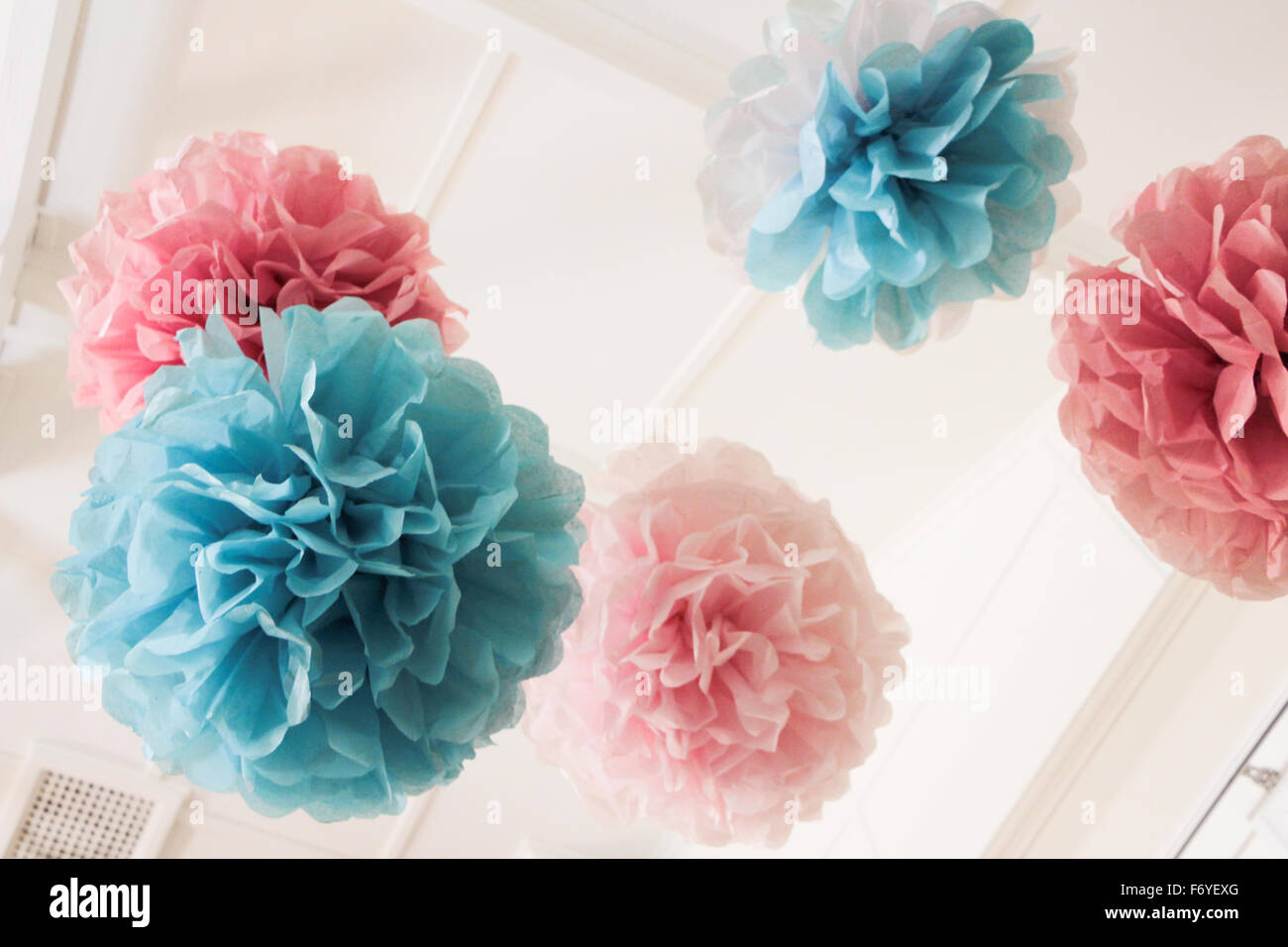 Pink And Blue Tissue Paper Pom Poms Hanging From Roof Rafters Stock