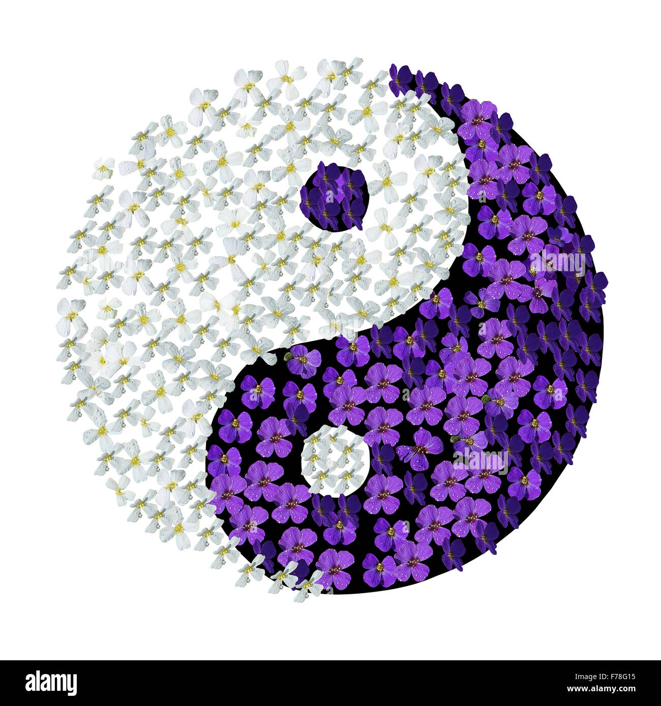 Floral yin yang yin yang symbol with white and purple flowers with yin yang symbol with white and purple flowers with droplets isolated on white mightylinksfo