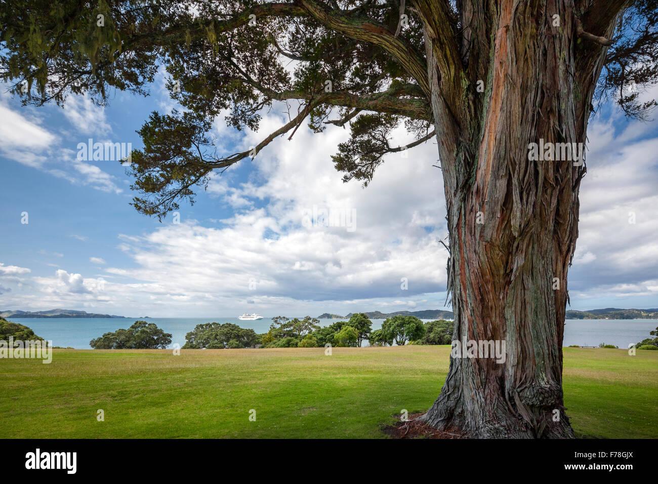 https://c7.alamy.com/comp/F78GJX/new-zealand-waitangi-treaty-grounds-and-the-bay-of-islands-cruise-F78GJX.jpg