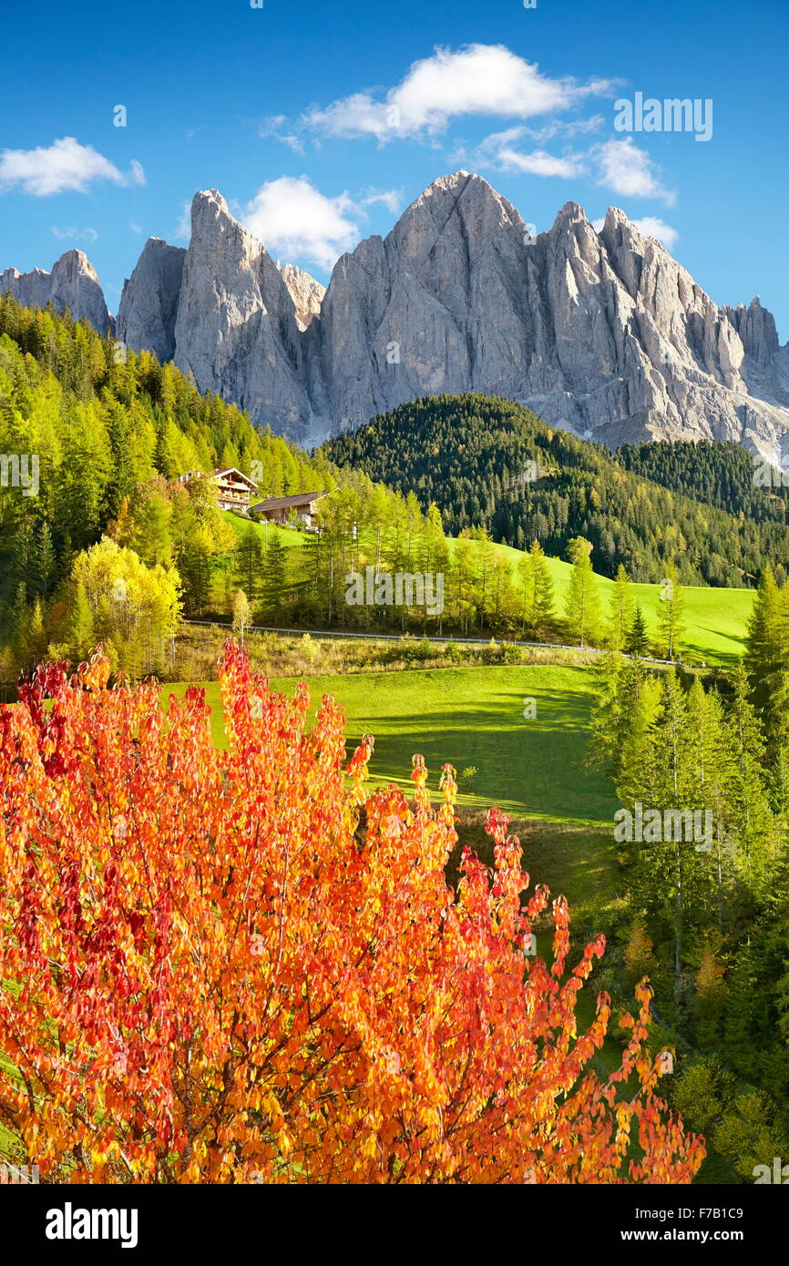 Dolomites Mountains, autumn landscape, Val Di Funes, Alps, Tyrol, Italy - Stock Image