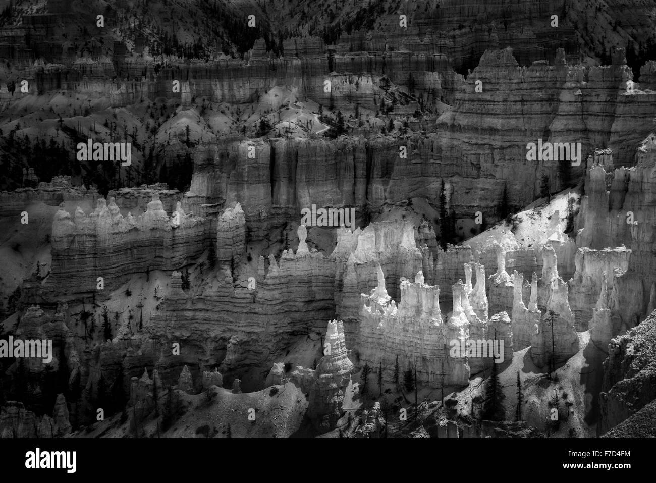 Hoodoos in Bryce National Park, Utah - Stock Image