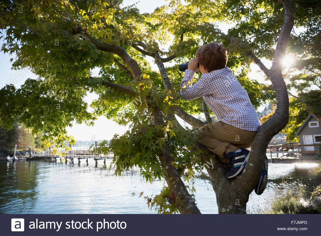 Boy climbing tree above lake using binoculars - Stock Image