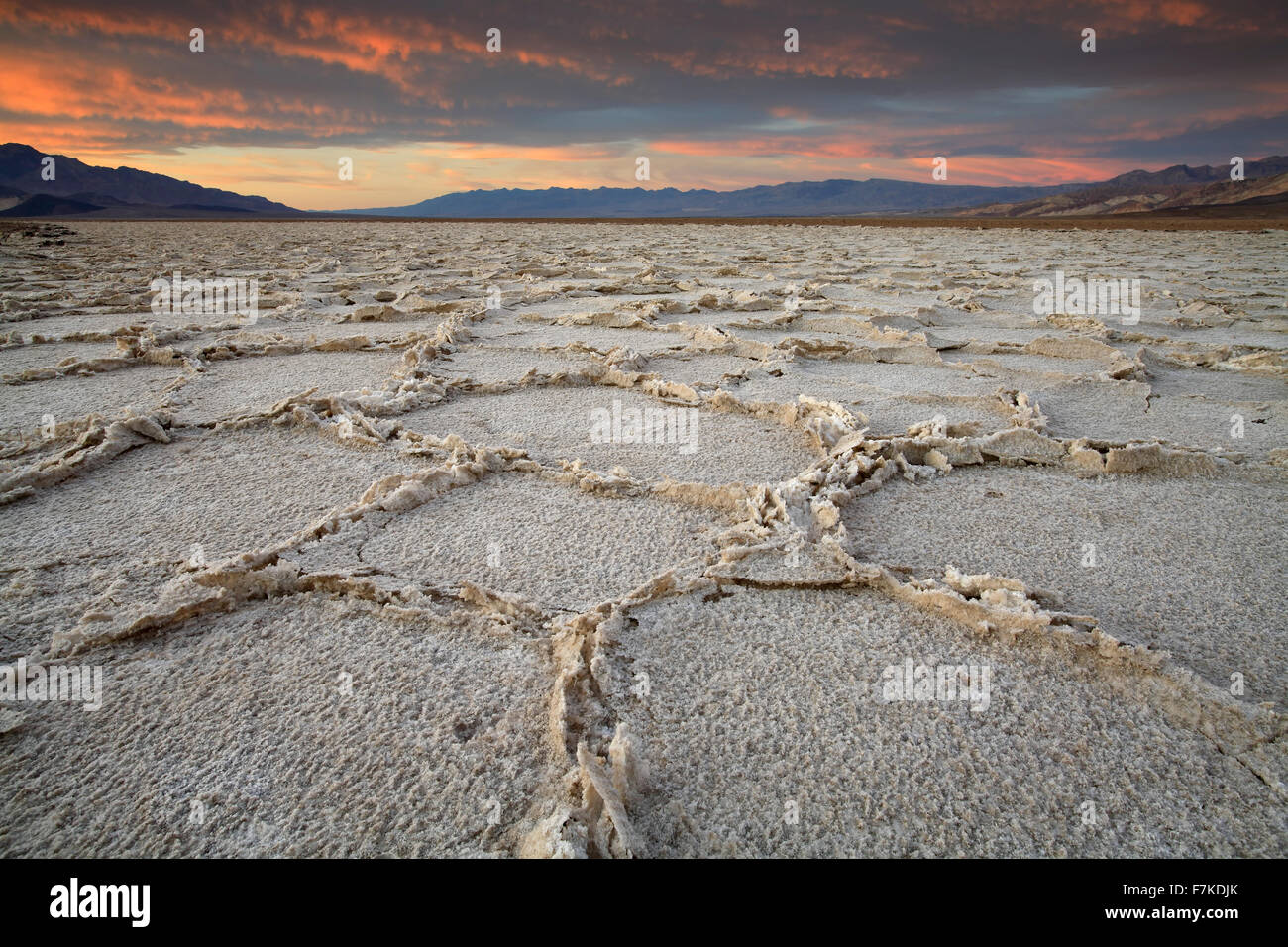 Cracked salt pans at sunset, Badwater Basin, Death Valley National Park, California USA - Stock Image