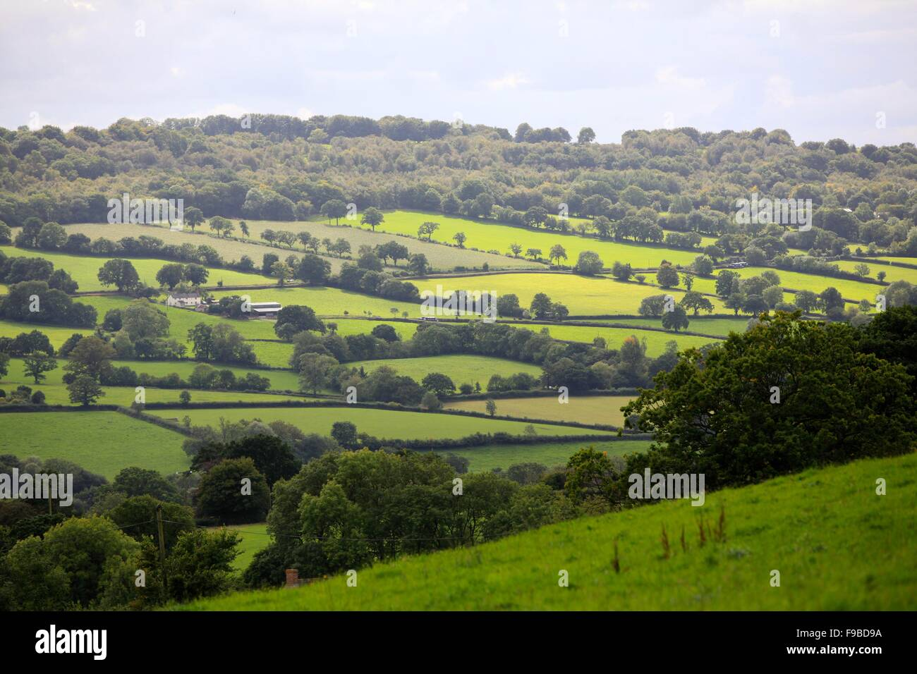 The Culm Valley, Blackdown Hills, Near Culmstock, Devon Stock Photo