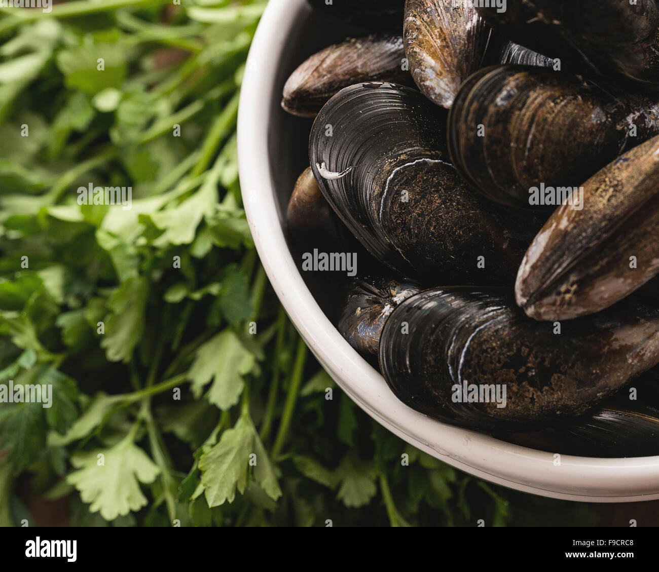 Mussels ready to be cooked presented with some of their ingredients - Stock Image