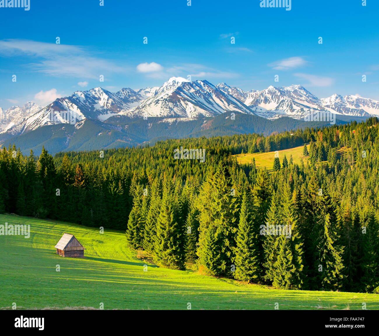 Szymkowka Glade,Tatra Mountains, Poland - Stock Image
