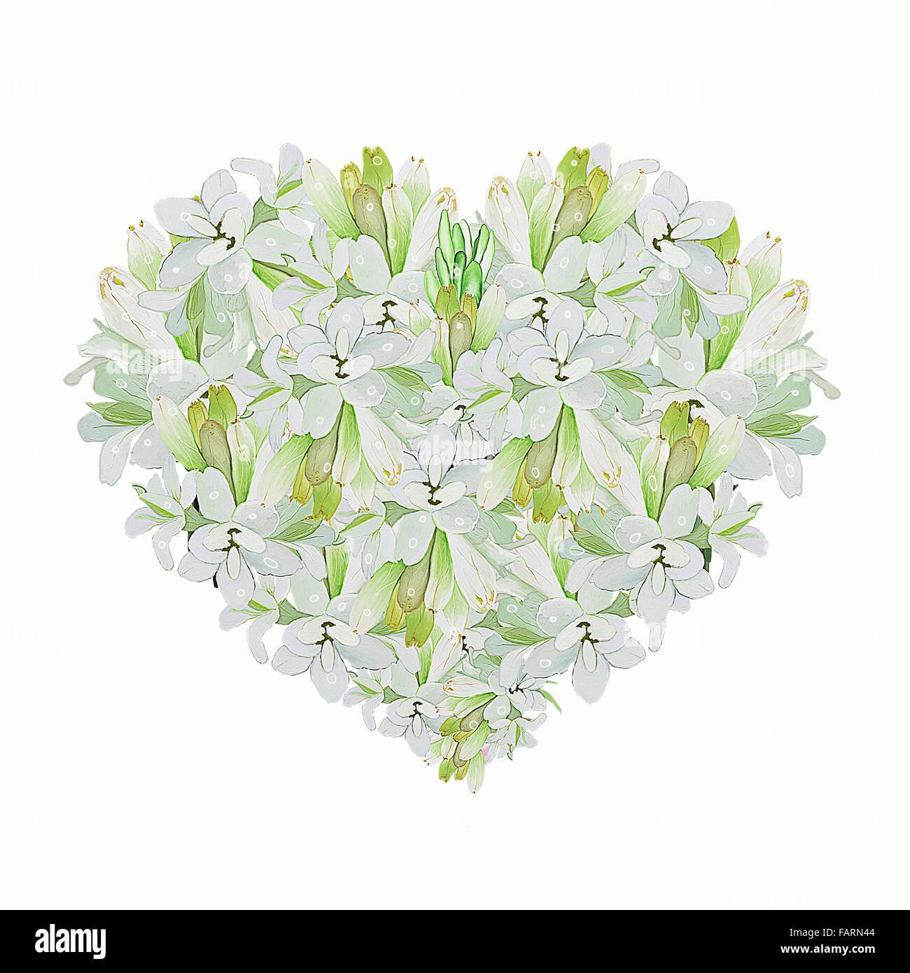 A Beautiful Heart Shape Of White Tuberose Flower On A White Stock