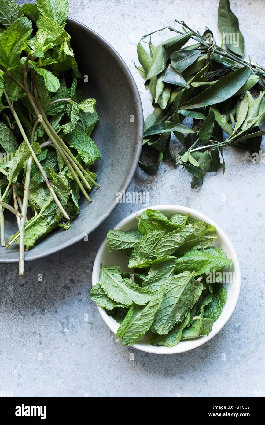 Overhead view of mint leaves in bowls - Stock Image