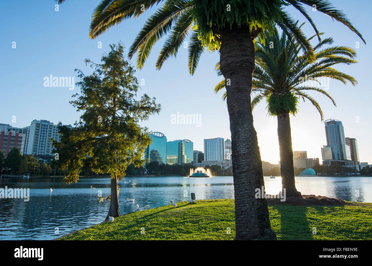 Orlando Florida Lake Eola Take skyline and fountain at  twilight with water and palms - Stock Image