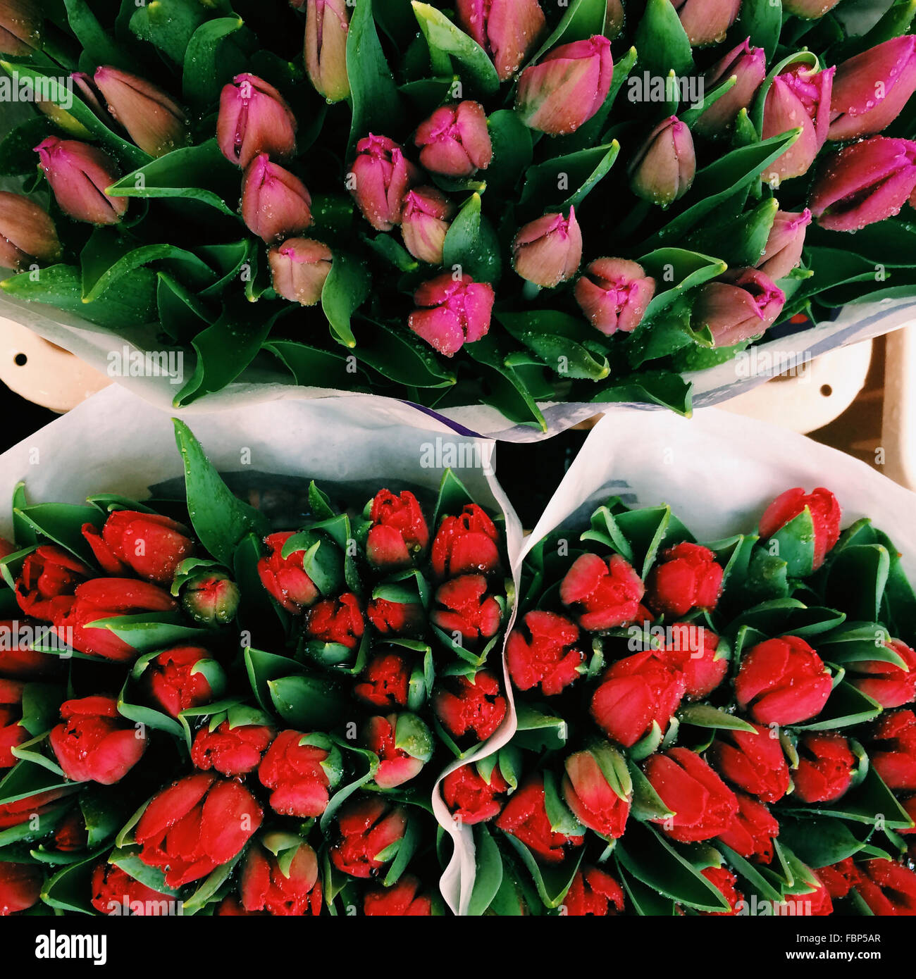 Full Frame Shot Of Rose Buds For Sale In Market - Stock Image